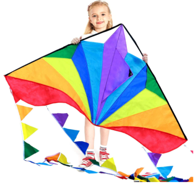 This is an image of kid's large delta kites in colorful colors